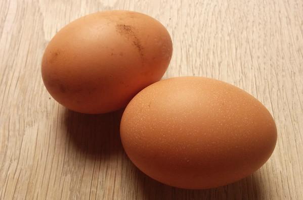 De eerste eitjes